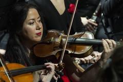Violín (aka laguaif) (Guillermo Relaño) Tags: guillermorelaño nikon d90 cameratamusicalis especial ¿porqueesespecial teatro concierto orquesta orchestra dvorak sinfonía nuevomundo nuevoapolo novena nueve 9 violín