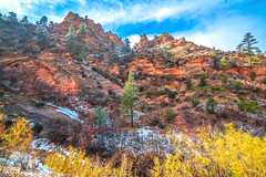 Peak Zion NP Autumn Colors & Snow! Zion National Park Fall Foliage Utah Autumn Colors Fine Art Landscape & Nature Photography! Sony A7R II & Carl Zeiss Sony Vario-Tessar T* FE Wide-Angle Zoom 16-35mm f/4.0 ZA OSS Lens! Super Sharp High Res 4K 8K Fine Art (45SURF Hero's Odyssey Mythology Landscapes & Godde) Tags: peak zion np autumn colors snow national park fall foliage utah fine art landscape nature photography sony a7r ii carl zeiss variotessar t fe wideangle zoom 1635mm f40 za oss lens super sharp high res 4k 8k elliot mcgucken east side