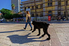 Tel Aviv (Hemo Kerem) Tags: israel telaviv street a7rm2 a7rii loxia21 zeissloxia21mmf28distagon loxia21mmf28 loxia2821 zeiss loxia 21mm distagon tlv manualfocus mf sony sonya7rm2 ilce7rm2 alpha dog