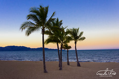 Townsville Beach (Theo Crazzolara) Tags: beach ocean sea vacation natural nature australia queensland scenic scenery landscape relaxing beautiful paradise lonely holiday palmtree palm tree family friends sunset sunrise evening morning sun townsville magneticisland