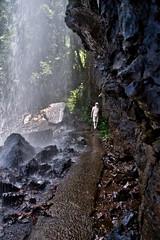Behind Blackfellow Falls (Tatters ✾) Tags: australia brisbane springbrook nationalpark waterfalls path hiking