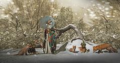 # 00148 (ryoresident) Tags: gabriel tlc okinawafes japonica zenith sintiklia fox dog shibainu snow