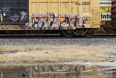(o texano) Tags: houston texas trains freights bench benching graffiti erupto a2m adikts d30