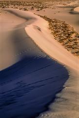 Mesquite Flat Sand Dunes, Death Valley NP, California (rocinante11) Tags: deathvalley dvnp nationalpark california desert dunes mesquiteflat sanddunes film slidefilm sand fujifilm fujiprovia