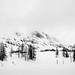 winter wonderland | eight