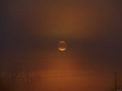 Amanecer en Zamora LIV (Luicabe) Tags: zamora luis cabello yarat1 enamorado luicabe paisaje amanecer cielo sol nube árbol poste cable zoom ngc luz niebla bruma exterior airelibre naturaleza