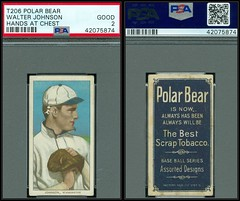 1909-11 / T206 White Border - WALTER JOHNSON - Washington Senators (Pitching) (Pitcher) (Baseball Hall of Fame in 1936) (PSA Certified) (1909 - 1911 / Polar Bear Back) - Tobacco / Cigarette Baseball Card (#229) (Treasures from the Past) Tags: t206 tobaccocard tobacco 1909 1911 cigarette cigarettecard americantobaccocompany whiteborder whiteborderset baseballcard lithograph whiteborderbaseballset t206baseballset hof halloffame baseballhalloffame walterjohnson thebigtrain psacertified washingtonsenators