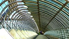 Caminos de hierro (portalealba) Tags: zaragoza puentes aragon españa spain portalealba fuji