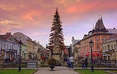 Christmas tree, Košice (majka44) Tags: christmas tree košice slovakia sky architecture building sunset