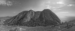Pedra do Elefante (mcvmjr1971) Tags: green nikon d800e lens sigma 2435 art f20 mmoraes pedra do costão itacoatiara niteroi brasil 2019 nove de janeiro verão trilha praia