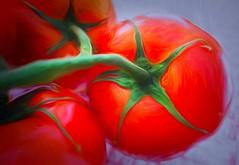 Red tomatoes (JLS Photography - Alaska) Tags: red tomato photomanipulation jlsphotographyalaska cmwd redmonday macro closeup digitalart digitalmanipulation painterly painting