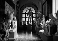 Bellas Artes, Bolonia