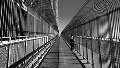 Jacques-Cartier multipurpose path - Piste piétonnière du pont (soniamarmen) Tags: skancheli montreal canada blackwhite bridge structure steel jacquescartier path