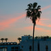 London Hotel Rooftop at Magic Hour - West Hollywood, CA