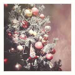Ese momento único y precioso de gracia, luz y libertad... (Sury Dayanna) Tags: beautiful christmastree beauty christmas capture magic solitarywitch amazing inspiration christmaslights picture momentos magia navidad intuición zen goodvibes