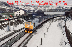 Nadelik Lowen ha Blydhen Nowydh Da (Kernow Rail Phots) Tags: nadelik lowen ha blydhen nowydh da 25322 d7672 tamworthcastle diggle swindon sheffield hellifield saturday 16th february 1991 1621991 1990s train trains railway railways sulzer salute railtour sulzersalute two tone green signals semaphores snow happychristmas headboard railroad diesel cottages scenic hills dales br britishrail snowploughs locomotive class25 253