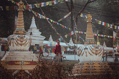 Swayambhu (danielhibell) Tags: kathmandu nepal travel asia discover explore world street streetphotography people religion culture ambience mood buddhism hinduism colour light praying moving special
