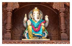 Ganesha (Joao de Barros) Tags: joão barros india ganesha