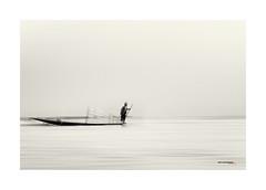 pescador en el lago Inle - Fisherman on Inle Lake (bit ramone) Tags: bitramone monocrhome blancoynegro blackandwhite birmania burma pescador lago lake water agua fisherman inle aoi elitegalleryaoi bestcapturesaoi