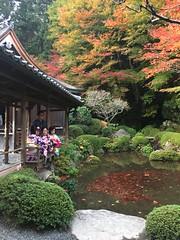 Sanzen-in (Eunus El Ya) Tags: sanzenin kyoto ohara japan temple jinja tera buddhism buddhist shinto shintoism momiji koyo fall autumn tree maple leaves color colored sakyoku sakyo ward
