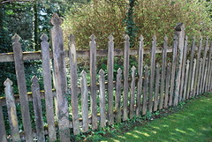 Poetic Palisade Partition - Hambleton (unclebobjim) Tags: poetic palisade partition hambleton woodenfence barrier visibility porous protection pointed