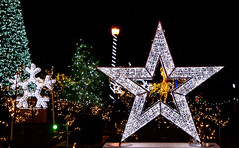 Stars and Trees (J.R. Rondeau) Tags: rondeau windsor ontario colours colors bright lights christmaslights christmasdecorations brightlights canoneos tamron2875 photoshopelements10