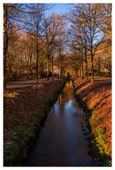 Canal in winter (cstevens2) Tags: hetziel industrialheritage industrieelerfgoed kalmthout landscape landschap winter bomen trees canal peat turfvaart turf zonneschijn sunshine belgium belgie belgique