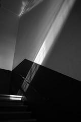 20190125 Nagoya 2 (BONGURI) Tags: 名古屋市 愛知県 日本 jp blackandwhite bw monochrome 白黒 モノクロ モノクローム sunlight light shadow 明かり 日光 影 stairs steps stairway staircase 階段 building 建物 archives cityarchives nagoyacityarchives 名古屋市政資料館 市政資料館 資料館 higashiward 東区 nagoya 名古屋 aichi 愛知 nikon df cosina cosinavoigtländercolorskopar28mmf28sl2naspherical