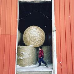 Boy exploring (jessalynn_sammons) Tags: iphone barn farm explore boy farmkid kid