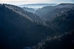 Höllental (gerhardschorsch) Tags: höllental sony zeiss za ilce7r a7r available availablelight natur nature fe55mmf18za f18 festbrennweite 55mm fe55mm landschaft landscape natural nebel tal vollformat