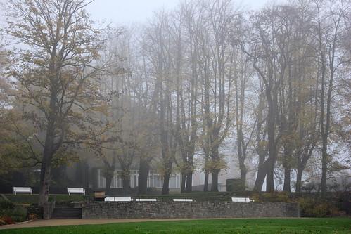 "Im Schlossgarten (03) • <a style=""font-size:0.8em;"" href=""http://www.flickr.com/photos/69570948@N04/45043625564/"" target=""_blank"">View on Flickr</a>"
