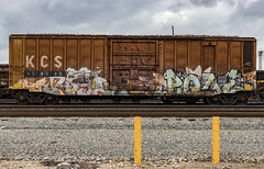(o texano) Tags: houston texas graffiti trains freights bench benching royl pque popquiz a2m adikts wh sws d30