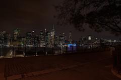 New York City Skyline (RCorsmeier) Tags: newyork newyorkcity newyorkinstagram nyclife nyc ilovenewyork ilovenewyorkcity newyorkbestshots travel travelphotography landscape photooftheday landscapephotography nikonphotographer american americanstyle nikonnofilter cincishooters