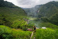 Batad Rice Terraces (ShurperMario) Tags: filipinas philippines asia nature naturaleza arroz rice terrazas terraces batad banaue cordillera mountains montañas green verde nikon d5100 clouds 1224 smoke trekking