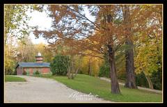INVERNADERO PALACIO DE AIETE - DONOSTIA (MONTXO-DONOSTIA) Tags: greenhause invernadero donostia aiete parque nature paisaje