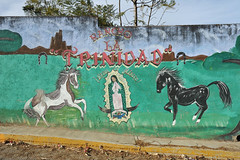 Oaxaca Mexican Painted Wall Horses Art (Ilhuicamina) Tags: caballos horses walls art paintings guadalupehidalgoetla oaxaca mexican