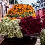 2018 - Mexico - Morelia - Flower Truck thumbnail