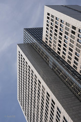 Aspiring   ---   Aufstrebend (ARTUS8) Tags: flickr fenster lookingup fassade linien modernearchitektur nikond800 nikon50mmf18 windows facade