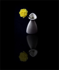 Reflection (Best Snaps) Tags: black white yellow flower reflection studio love photo photograph photographer camera canon lighting