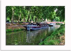 LES PENICHES (capo.jeanclaude) Tags: peniches cal midi toulouse occitanie pont arbres canal eaux water the magic eye flickr mordus de photos