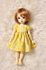 244/365 Mellow Yellow (AluminumDryad) Tags: fairyland littlefee ltf ante tinybjd bjd balljointeddoll doll resin sewing handmade dolldress dollclothes yellow etsy etsyshop trillianandcompany