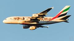 A6-EEQ Emirates A380-800 IAH 2019-01-04 (GFB Aviation Photography) Tags: unitedforwildlife emirates a380 a380800 iah kiah