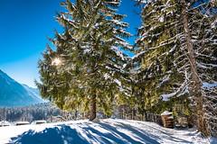 Ramsau bei Berchtesgaden (elzauer) Tags: leica leicaq ramsaubeiberchtesgaden bayern germany de