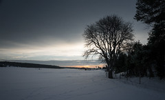 Cold Days (Eklandet) Tags: nature sverige sweden samsung sky scandinavia nordic countries naturephotography landscape fineartphotography landscapephotography naturelover winterscape winter cold snow ice frost tree sunset sunrise river people photo field