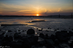 Low Tide (Elzyy) Tags: town horizon island jetty landscape muddy nature rocks sand summer spring light sunset water weather