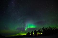 Aurore boréale prise depuis le fleuve Kemijoki (Jérôme LÊ) Tags: finlande laponie savukoski samperinsavotta finland lapland aurore auroreboreale aurora northernlights revontulet