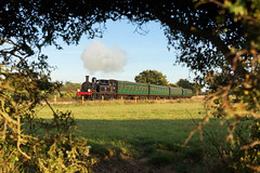 Framed View (gooey_lewy) Tags: lswr nine elms works 02 tank engine isle wight steam railway iow 044t southern 24 calbourne british rail railways black lone survivor 30742 charter loco locomotive train vintage br smallbrook wotton sunny day autumn colours colour hawthorn bush hedge through hole key view artistic grass tree railroad