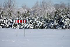 Liiklusmärk (Jaan Keinaste) Tags: pentax k3 pentaxk3 eesti estonia loodus nature talv winter liiklusmärk lumi snow kuusk spruce trafficsign