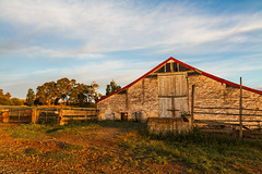 Hoads Woolshed, Tungkillo - South Australia (Trace Connolly Photography) Tags: australia natur natura natural nature naturaleza naturephotography colour color colourful outdoor outdoors outside eos canon sunlight exposure flickr landscape earth environment environmental environmentalphotography sunset sunrise contrast red green yellow blue black white scene scenery cloud clouds sky scenic weather holiday view country countryside orange purple pink old oldbuildings rustic ruin building wood november spring friday