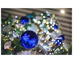 _PXK7727 (Concert Photography and more) Tags: 2018 november 18 japan tokyo sinjuku pentak k1ii zeiss czjpancolar50mmf18 christmas tree decoration lights luminaria boke bokeh vintagelens oldlens liveactionhero